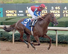 Suburban Showdown: Funny Cide, Peace Rules, and Dynever