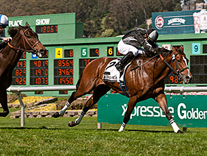 Pepper Crown wins the 2014 San Francisco Mile.