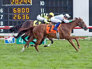 Peyote Patty wins the 2012 Illinois Owners Fillies and Mares Stakes.