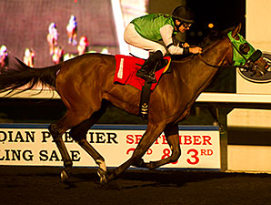Phil's Cocktail wins the 2014 Simcoe Stakes.