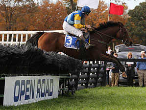Pierrot Lunaire Takes Close Grand National