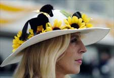 Beautiful Weather For Preakness Day