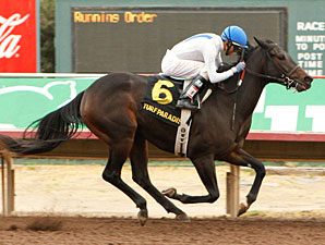 Pinal wins the 2009 Arizona Breeders' Futurity.