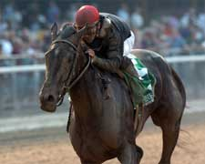 Pine Island Euthanized; Fleet Indian Injured in Distaff