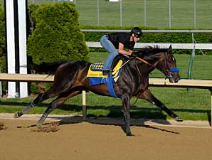 Pioneerof The Nile works at Churchill Downs on April 27