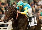 Pioneerof the Nile Strong &#39;Felipe Choice