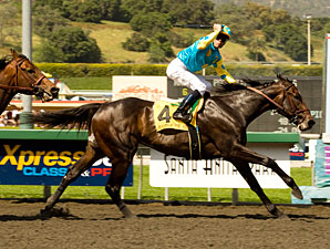 Pioneerof The Nile: More Than Just a Survivor