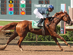 Pious Ashley wins the 2009 Valid Expectations.