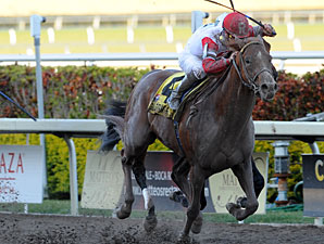 Pleasant Prince Favored in Ohio Derby