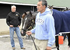 Todd Pletcher's KY Derby Horses Get a Bath