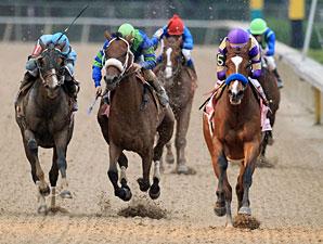 Plum Pretty wins the 2012 Apple Blossom.