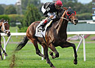 Joe Hirsch: Point of Entry Solidifies Status