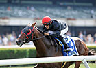 Point of Entry Could Be Dynaformer's Heir