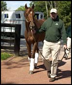 Point Given Arrives at Three Chimneys
