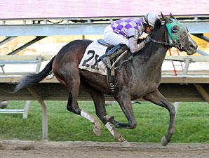 Pollard's Boy wins the 2011 Pennsylvania Nursery Stakes.