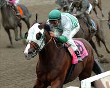 Pomeroy Pops An Upset in Forego Handicap