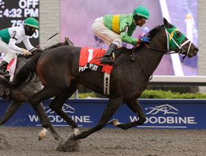 Durham Cup: Pool Play Prevails in Stakes Bow