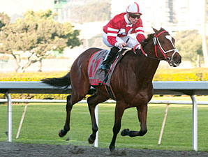 Positive Response wins the 2011 California Derby.