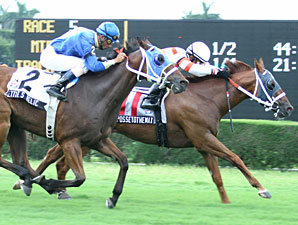 Possetothemax wins the 2009 Reappeal.