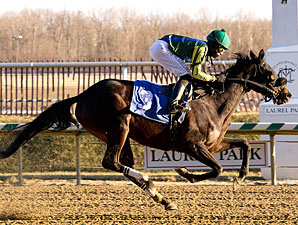 Potosina wins the 2011 Nellie Morse Stakes.