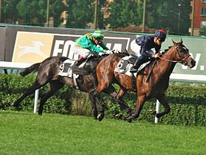 Pour Moi wins the 2011 Prix Greffulhe.