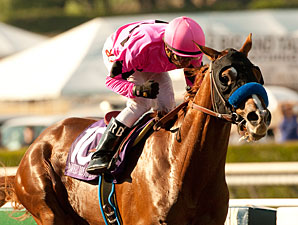 Quick Drill for Power Broker at Santa Anita