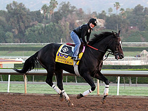 Prayer for Relief - Breeders' Cup 2014