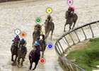 2015 Preakness Stakes Race Sequence