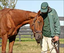 Hall of Famer Precisionist Euthanized