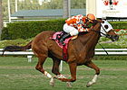 Aqueduct Offers Three Graded Stakes Nov. 6