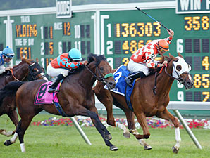 United Nations Loaded With Grade I Winners