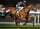 Presvis Surges to Dubai Duty Free Triumph