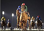 Godolphin Pair Face Off in Maktoum Challenge