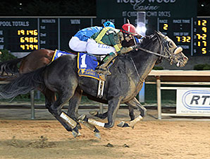 Prince of Windsor wins the 2014 West Virginia Lottery Breeders' Classic Stakes.