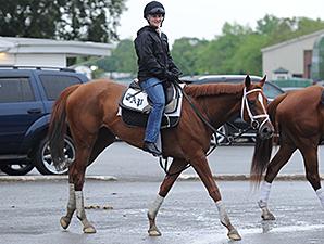 Princess of Sylmar - Belmont Park, May 24, 2014.
