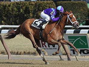 Princess of Sylmar wins the 2013 Busher.