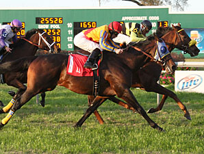"Princeville Condo (#6) with Francisco Torres aboard edges out Pic Six (#1) with Shane Sellers up to win the ""Buddy"" Diliberto Memorial Handicap at Fair Grounds."