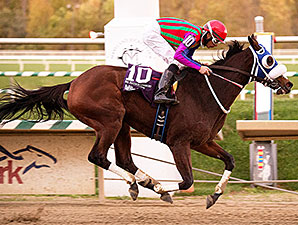 Printasticat wins the 2014 Maryland Million Distaff Starter.
