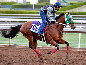 Private Prospect works towards the Breeders' Cup.
