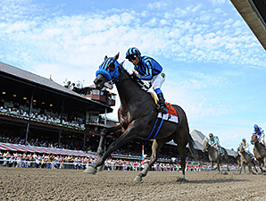 Private Zone wins the 2015 Forego Stakes.