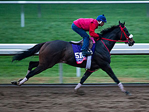 Private Zone - Keeneland, October 24, 2015.