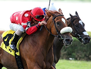 Prize Doll wins the 2012 Ms Brookski Stakes.