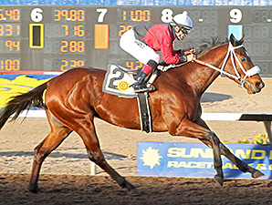 Proceed wins the Red Hedeman Mile.