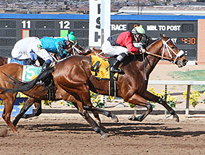 Proceed wins the 2015 New Mexico State University Handicap.