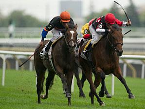 Professor's Ride wins the 2013 La Prevoyante Stakes.