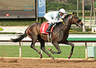 Dirt Runners Try Turf in La Jolla Handicap
