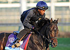 Casse, Oxley Are a Breeders&#39; Cup Dynamic Duo