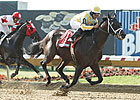 Prospective Captures Slender Ohio Derby