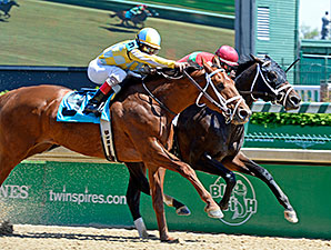 Protonico wins the 2015 Alysheba Stakes.
