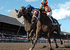 Proud Spell Could Be Breeders' Cup Bound